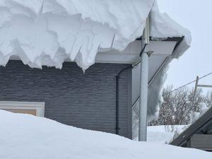記録的大雪による雪害