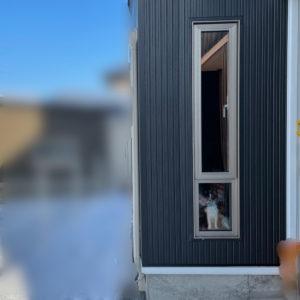 『愛犬家住宅リフォーム』ワンちゃんがお迎えしてくれる窓